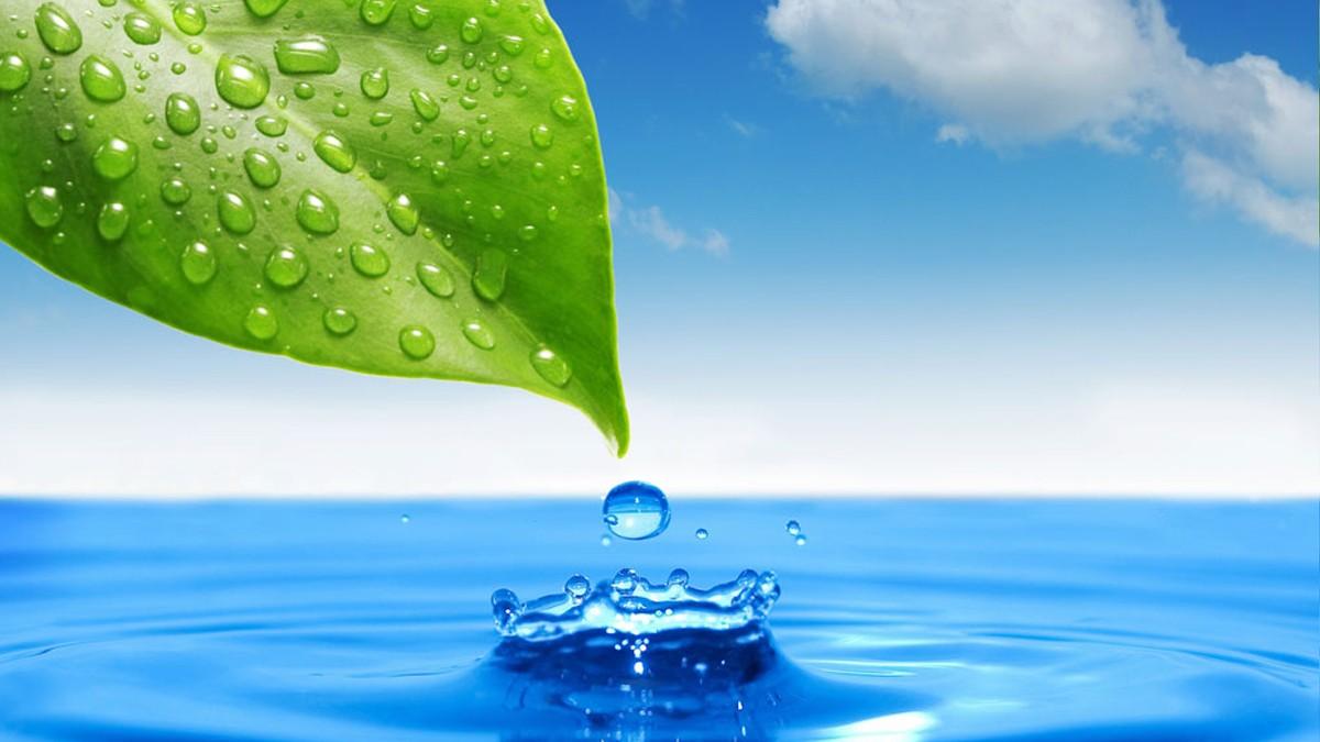 Использование и охрана вод