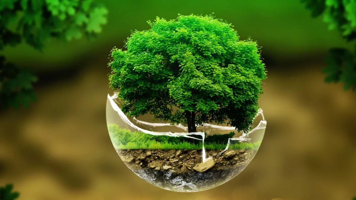 Охрана окружающей среды | gorodnichy